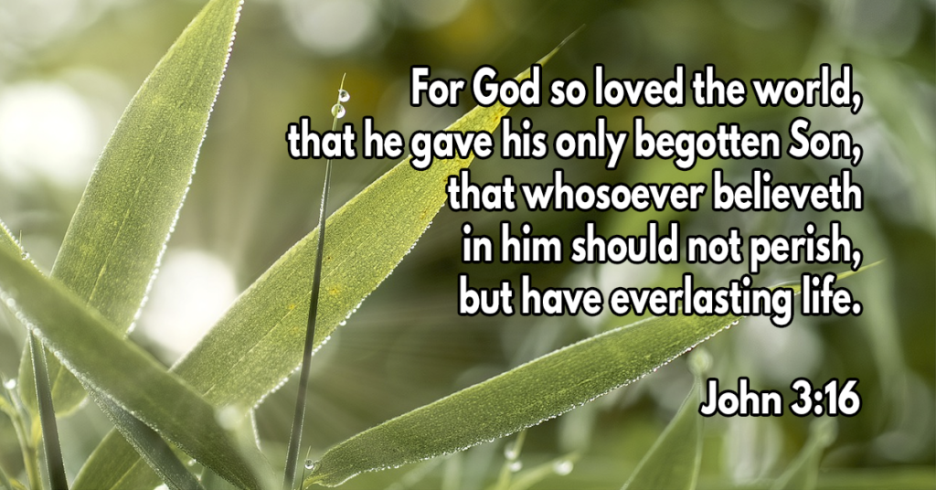 For God so loved the world, that he gave his only begotten Son, that whosoever believeth in him should not perish, but have everlasting life
