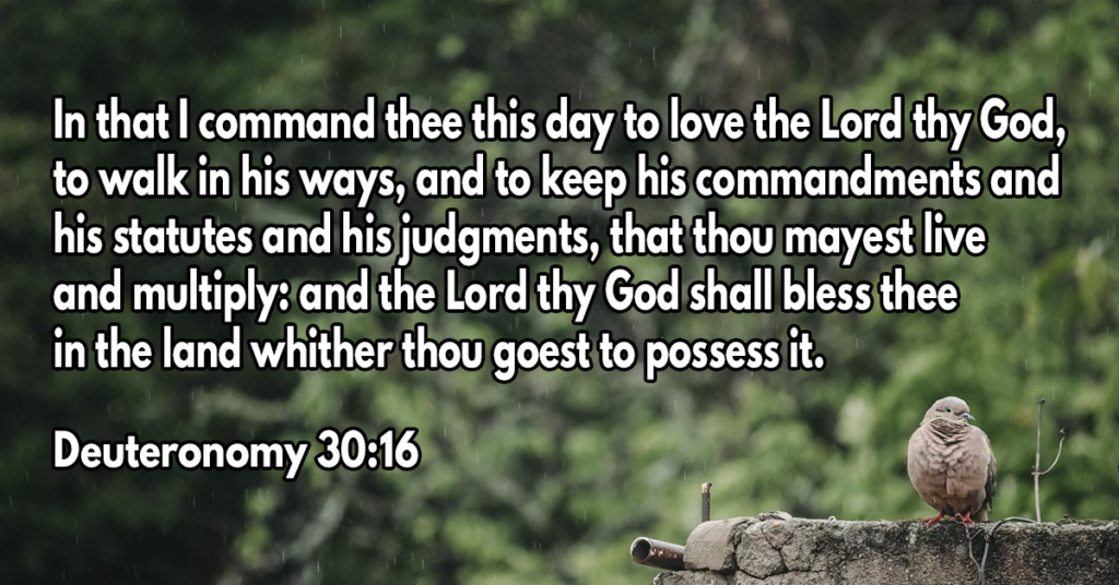 In that I command thee this day to love the Lord thy God, to walk in his ways, and to keep his commandments and his statutes and his judgments, that thou mayest live and multiply